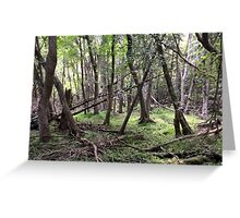 Naturescape 5 Greeting Card