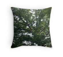 Clapping Heights Throw Pillow