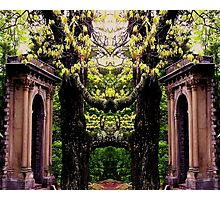 Twin Temples Photographic Print