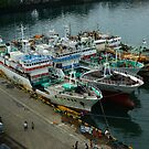 Chinese Fishing Fleet Restocking in Fiji by Keith Richardson