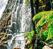Stephens Falls by maureenclark