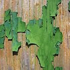 Green Peeling Paint on Wood by Michele Filoscia