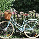 Beautiful Bike by milo1262