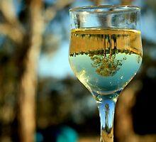 Chardonnay by Kym Howard