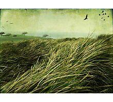 Windy Day on the Nut-Tasmania Photographic Print