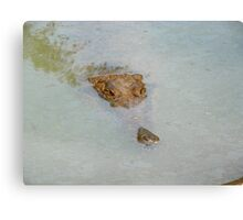 Caught ANYTHING yet? Canvas Print