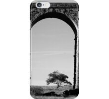 Lone Tree at the Viaduct iPhone Case/Skin