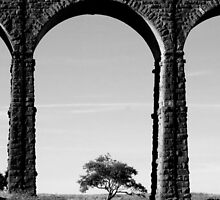 Lone Tree at the Viaduct by mikebov