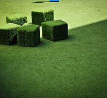 Green by Geoff Harrison
