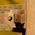 Old Door Lock! by vasu