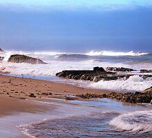Sunlight on Surf  by Pene Stevens