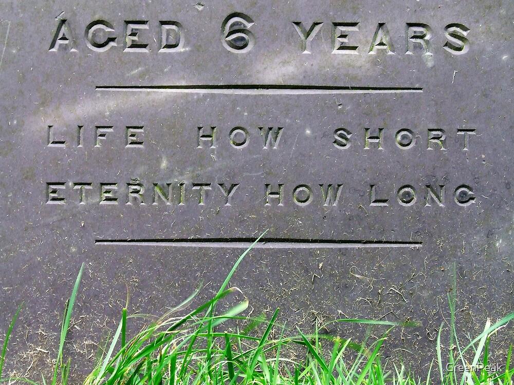 Kirk Langley Gravestone by Paul  Green