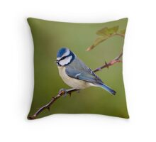Blue tit on rose branch Throw Pillow
