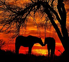 Goodnight Kiss by Barbara D Richards