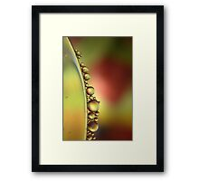 Oil and Water -Two Precious Resources  Framed Print