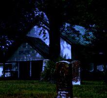 NightSounds by Herb Spickard