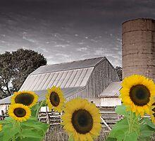 FarmScape by Herb Spickard