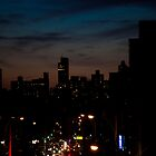Manhattan from Queens by Alexandru Barabas