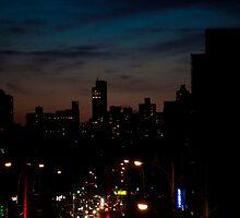 Manhattan from Queens by Alexandru Barabas