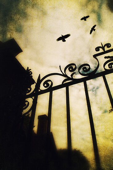 The Gate by Nikki Smith