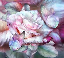 Pastel Rose And Butterflies by Carol  Cavalaris