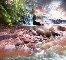 Water of Dreams by Michelle Hamilton