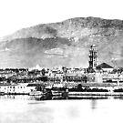 Beautiful Old Split  by MedILS