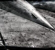 Angles of Flight by Myron Watamaniuk