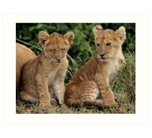 Out of Africa - Sibling Cubs Art Print