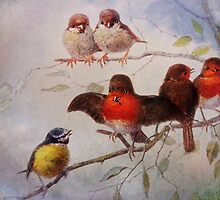 The Conversation by Carol Bleasdale