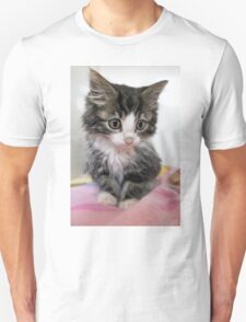 Itty Bitty Cutie Kitty Unisex T-Shirt