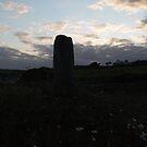 Ogham Stone & Dasies,Bunmahon,Co.Waterford,Ireland. by Pat Duggan