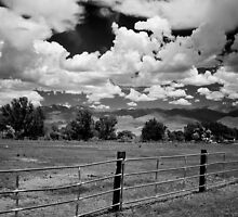 At the Ranch by Cat Connor