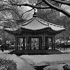 Tapgol Park in Black & White by Christian Eccleston