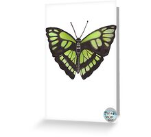Butterfly Series 08 Greeting Card