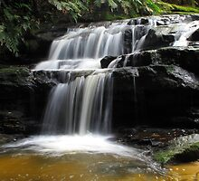 Leura Cascades  by Michael Vickery