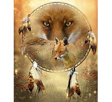 Dream Catcher - Spirit Of The Red Fox Photographic Print