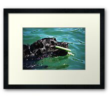 I'VE GOT IT!! Framed Print