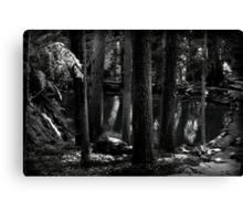 Midnight Grotto Canvas Print