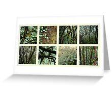 Alpine Rainforest Greeting Card