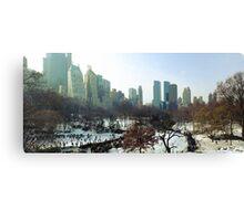 Central Park Winter Morning Canvas Print