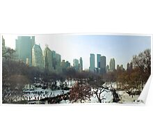 Central Park Winter Morning Poster