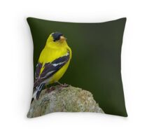 American Goldfinch: Prince of Songbirds  Throw Pillow