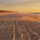 Sunset Tracks by simtmb