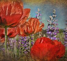 Poppies and Lupine by Kay Kempton Raade