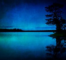 Starry Night Delight by Megan Noble