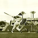 The Homerun Swing by Buckwhite