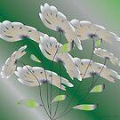 Winter Blooms.... by IrisGelbart