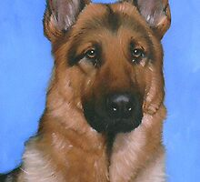 Alsatian Sitting Pretty by Paul Coventry-Brown