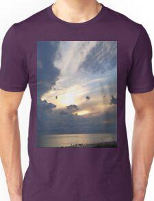 Gulls Unisex T-Shirt